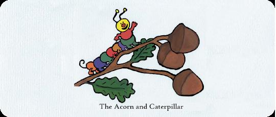 the-acorn-&-caterpillar-header